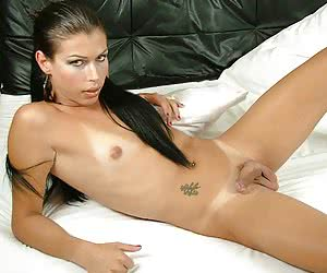 Longhaired shemale kitty gets horny enough for her thongs to get torn