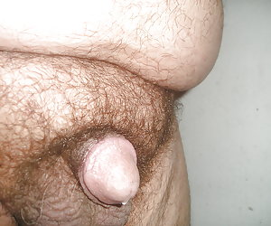 Small Hairy Cock gelery